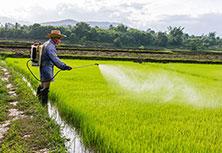Fertilizers Pesticide